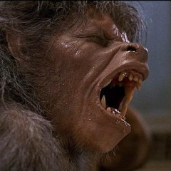 The 13 Best Werewolf Movies