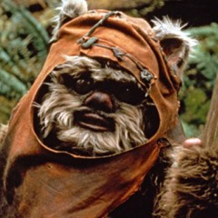 Why You Would Never Mess With Ewoks